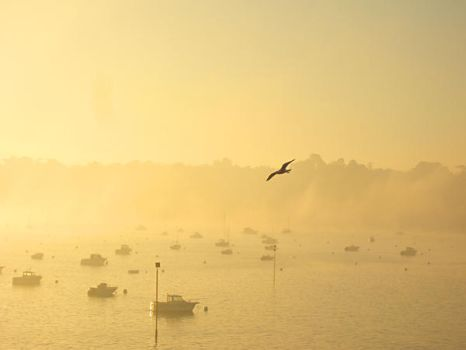 Morning in Dinard by Mahyne