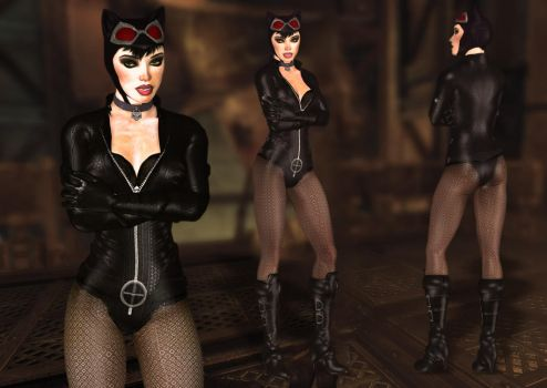 Catwoman Stealth Suit_Mod for XPS and Arkham City by arpith20