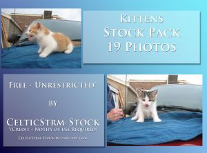 Kittens by CelticStrm-Stock by CelticStrm-Stock