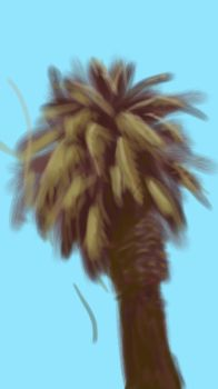 SKTECH A PALM TREE by dude707LoL