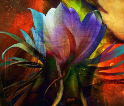 Grungy Night Blooming - Detail by Fotomonta