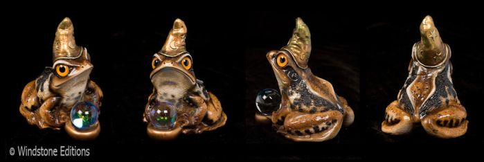 Japanese common toad wizard by Reptangle