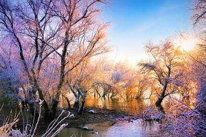 winter color on danube river by jordache