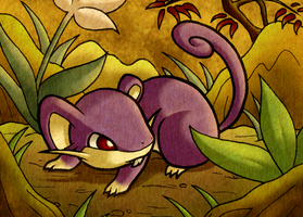 :Year of the Rat: Rattata by endless-whispers