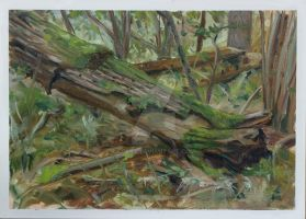 10-Landscape-Nature-Oil Painting by Csaba Tibor Pa by C5aba