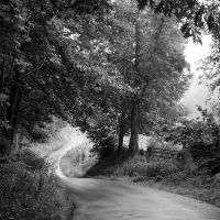 the road leads gently home by sandpiper764