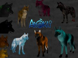 Arokai Canine Mix by Aimorragia
