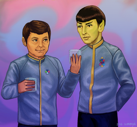 Spock And McCoy [Contest Prize] by sumenya