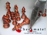 Checkmate by Arnaldo-aka-Homer