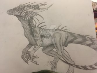 Raptor by Mysterymusix