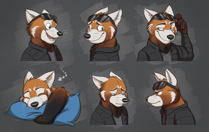 Commission: Justin's Expression Sheet by Temiree