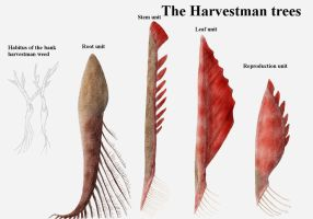 REP: The Harvestman plants by Ramul