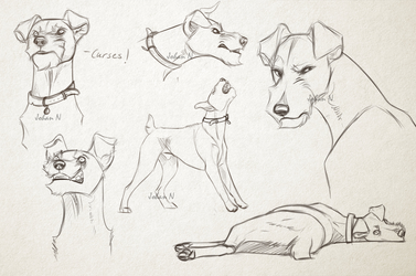 Vildmarkens Terrier sketch by Runestorm-kennel