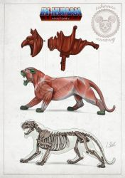 BATTLE CAT anatomy by AlessandroConti