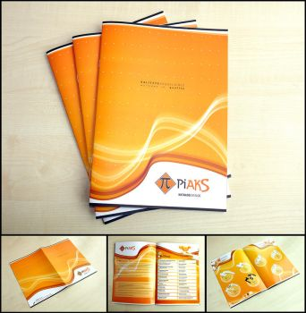 CATALOG DESIGN 1 by kungfuat