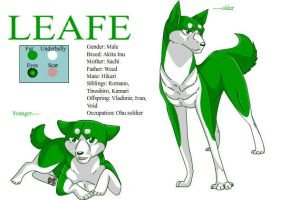 Leafe character sheet by dog-san
