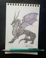 Smaugust - Void Dragon by Squabblelobster