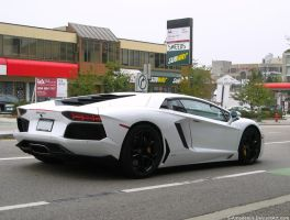 Bianco Lambo by S-Amadeaus