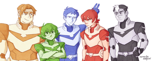 Voltron Team of Five by Anyarr