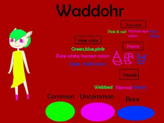 Waddohr referance sheet (Closed Species!) by Sonicteers