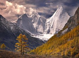 Fall in the Himalaya by michaelanderson