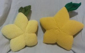 Knitted Papou Fruits (final version) by shadow-bahar