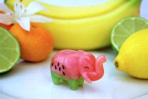 Watermelophant! (Watermelon Elephant) by MiniMynagerie