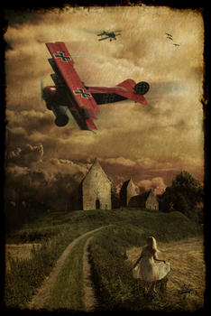 The Red Baron by Alegion