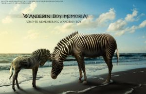 Wanderin Boy Memorial by Llama-In-A-Box