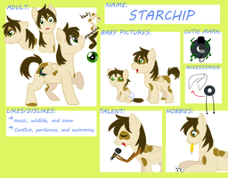 StarChip Reference commission example by Awkwardly-Handsome