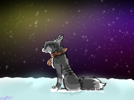 Northern Lights~ -commission- by Schuffles