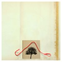 84 - red  thread  and  tree by piotroffice