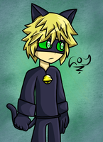 Chat Noir by IVOanimations