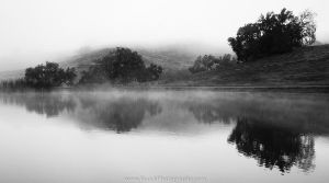 Mist of Life by BuuckPhotography