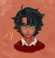 Harry Potter by MoonPanBlue
