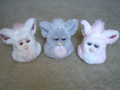 My Furby Collection: 2005 Furbys (Update 1) by sbfan101909
