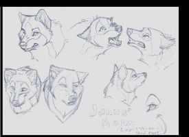 Expression Sheet by wadifahtook