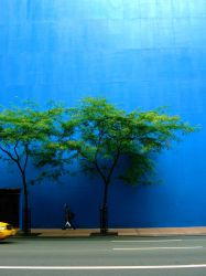 Blue NY by le-liups