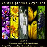 Easter Flower Textures by BFstock