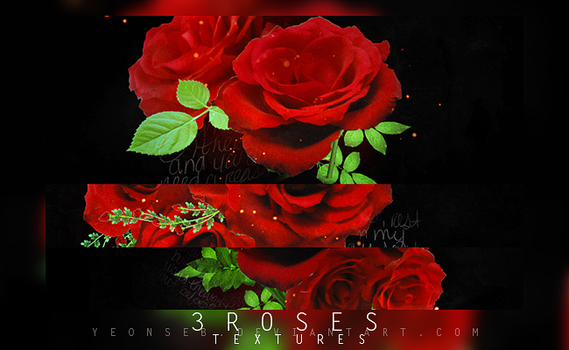 3.roses-textures. by Yeonseb