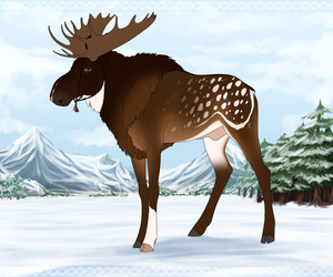 Maned Moose Export | C0017 | CLOSED by Moose-On-Ice