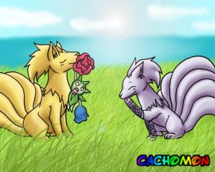 Request: Ninetales in love by Cachomon