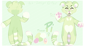 Pi - ref sheet by P4LE