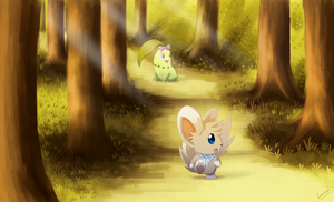 COM: Exploring the Forest