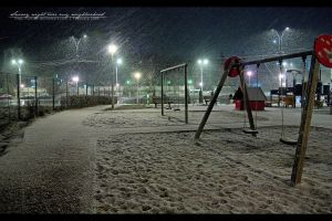 Snowy night at the park by vxside