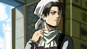 Levi The Cleaning Lady