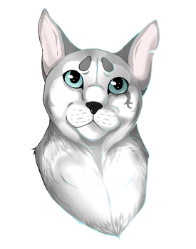C - Shaded Headshot for x-Beggon by animalover501