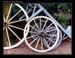 CART WHEELS (DSCF9259 #1a CB) by Chattering-Magpie