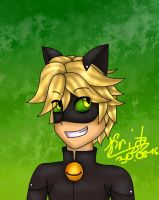 Cat Noir new better version by Kristalina-Shining