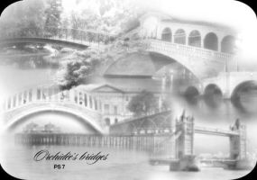 Orchidee's Bridges by orchidee